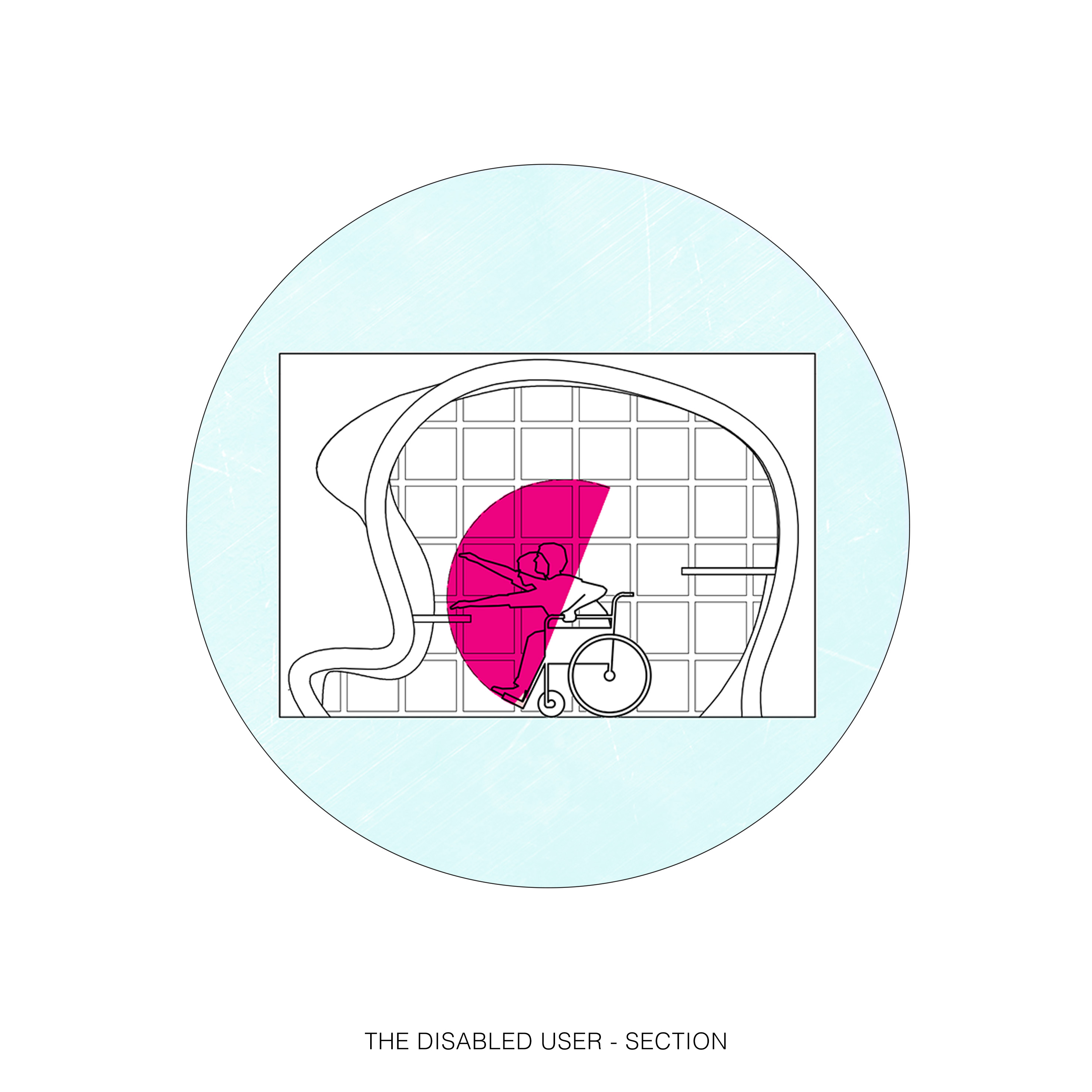 19_THE DISABLED USER – SECTION